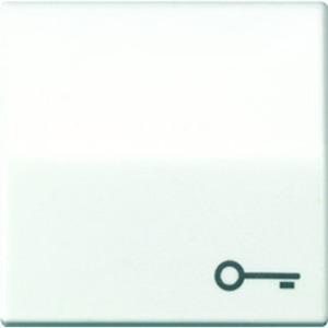 Jung Wippe Symbol Tür Zentralplatte für Taster weiß glänzend