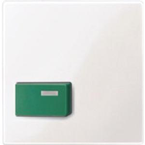 Merten Zentralplatte für Abstelltaster grün aktivweiß glänzend