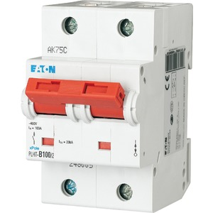 Eaton Leitungsschutzschalter 100A 2-polig D-Char