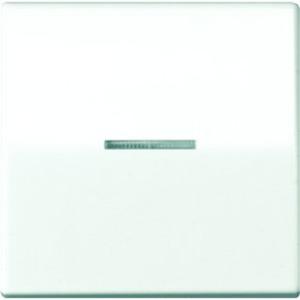 Jung Wippe Linse Lichtleiter Zentralplatte Wipp-Kontrollschalter BA 1-fach