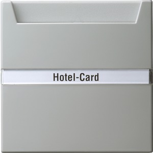 Hotel-Card-Taster beschriftbar für S-Color grau
