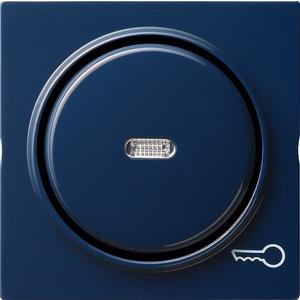 Gira Wippe Kontroll Symbol Schlüssel für S-Color blau