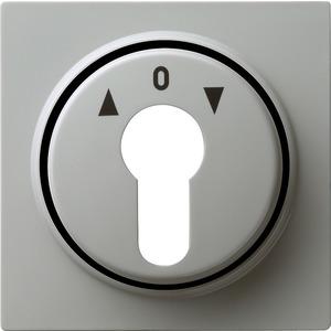 Abdeckung Schlüsselschalter für S-Color grau