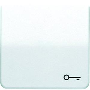 Wippe Symbol Tür für Taster elektroweiß glänzend