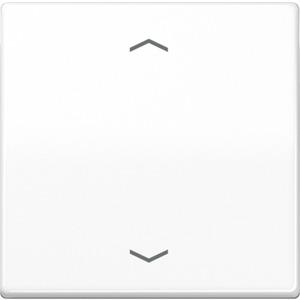 Steuertaste Standard Symbole Pfeile Duroplast glänzend alpinweiß