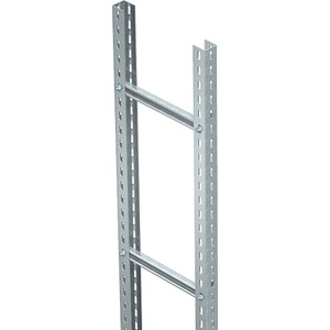 Steigeleiter schwer mit C 40 Sprosse Stahl tauchfeuerverzinkt 400x3000 mm