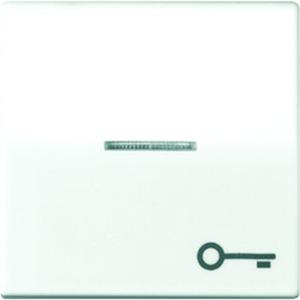 Jung Wippe Symbol Tür Linse Lichtleiter Zentralplatte beleuchtbare Taster