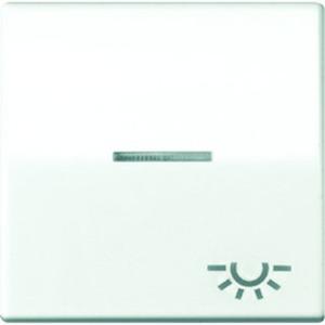 Jung Wippe Symbol Licht Linse Lichtleiter Zentralplatte für Taster weiß