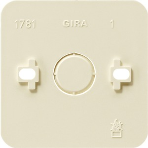 Montageplatte 1-fach Aufputz