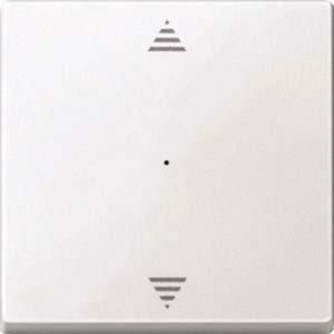 Wippe f. Taster-Modul 1-fach (Pfeile Auf/Ab) polarweiß