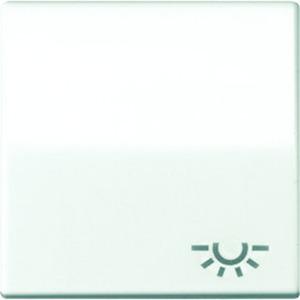 Jung Wippe Symbol Licht Zentralplatte für Taster weiß glänzend