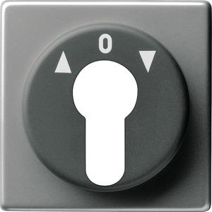 Abdeckung Schlüsselschalter für E22 Edelstahl