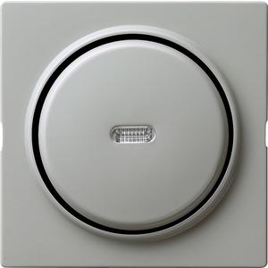 Taster senkrecht Wechsler Kontroll für S-Color grau