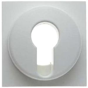 Bevorzugt Berker 15078989 | Zentralstück für Schlüsselschalter/-taster Glas BL33