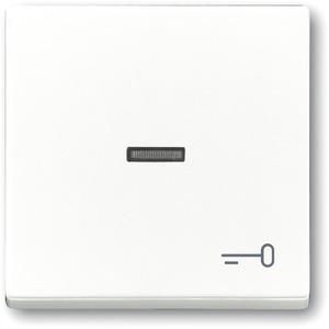 Wippe für Unterputz Taster Symbol Schlüssel studioweiß glänzend