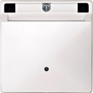 Card-Schalter polarweiß System Fläche